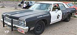 Dodge Monaco Sedan Bluesmobile